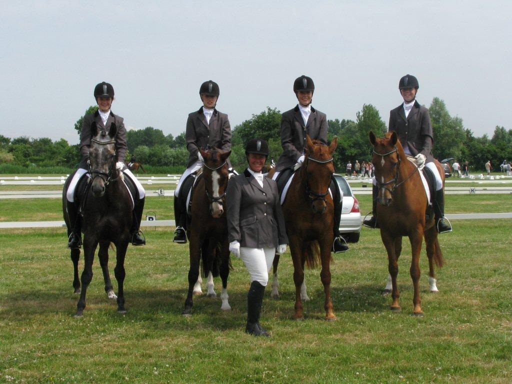 kringkampioenschap 2010, viertal pony's